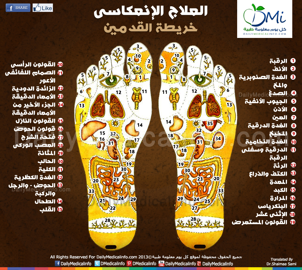 خريطة اعضاء الجسم في القدم