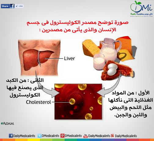DailyMedicalinfo liver Cholesterol