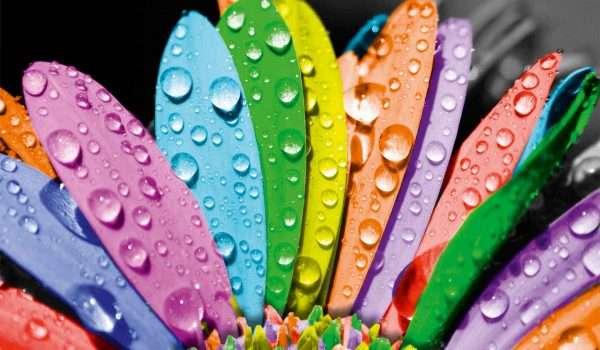 انفوجرافيك   كيف تؤثر الألوان على نفسيتك؟؟ - كل يوم معلومة طبية
