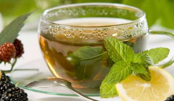 Lemon-Balm-Tea-Photos