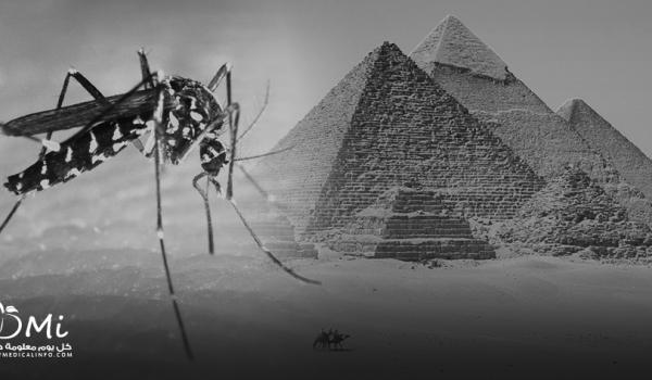 zikaegypt