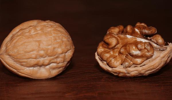 walnut news
