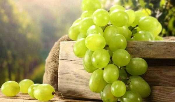 فوائد العنب الاخضر