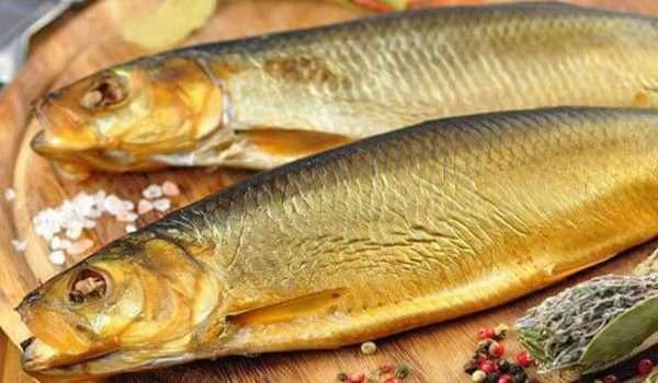 فوائد سمك الرنجة