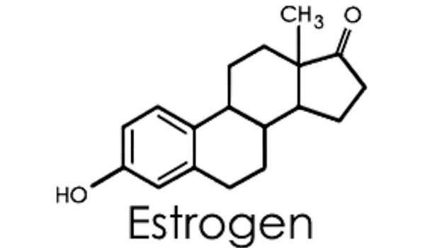 هرمون الانوثة أو هرمون الاستروجين