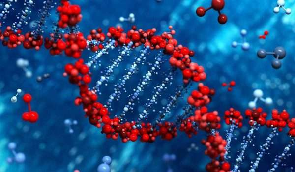 تحليل الجينات الوراثية