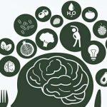 وظائف الدماغ