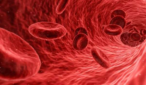 حساسية الدم