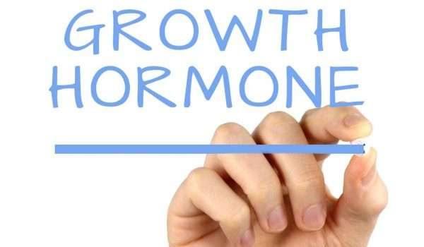 هرمون النمو