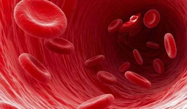ادوية سيولة الدم