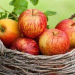 التفاح والرجيم