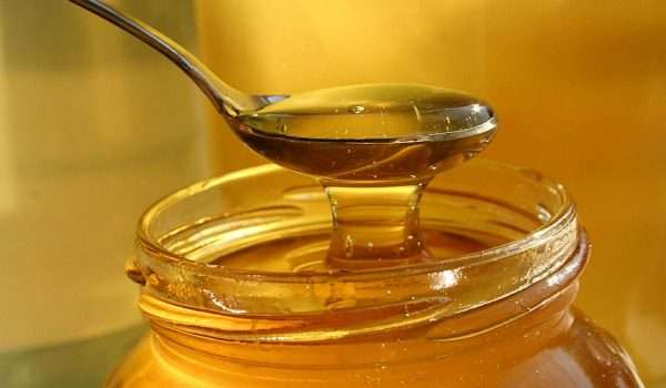 Image result for العسل