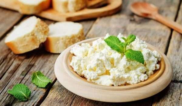 الجبنة القريش والرجيم