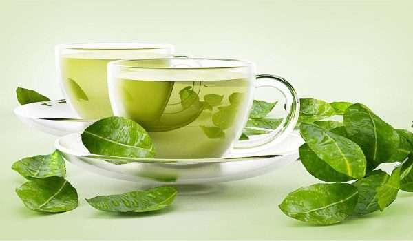 الشاي الاخضر للتنحيف أو فوائد الشاي الأخضر للرجيم