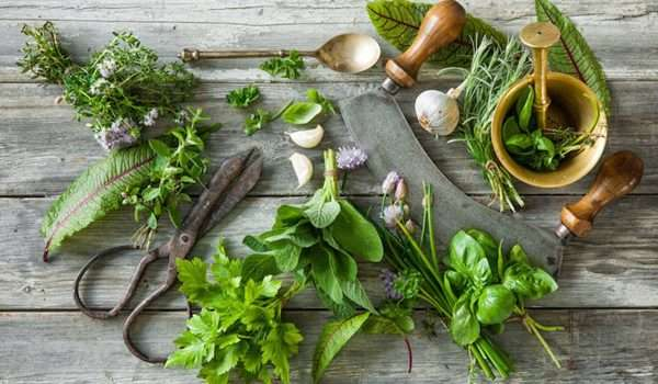 علاج عسر الهضم بالاعشاب المختلفة والعلاجات البديلة