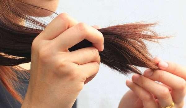 نتيجة بحث الصور عن تقصف الشعر
