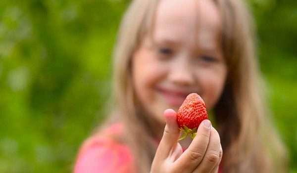 فوائد-الفراولة-للاطفال2