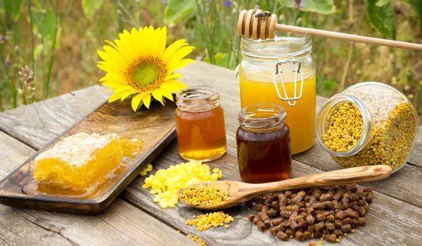 غذاء ملكات النحل للاطفال