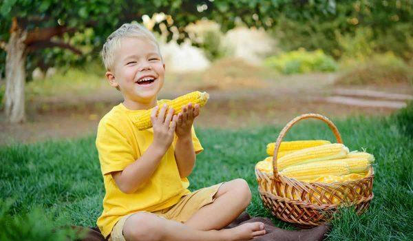 فوائد الذرة للاطفال