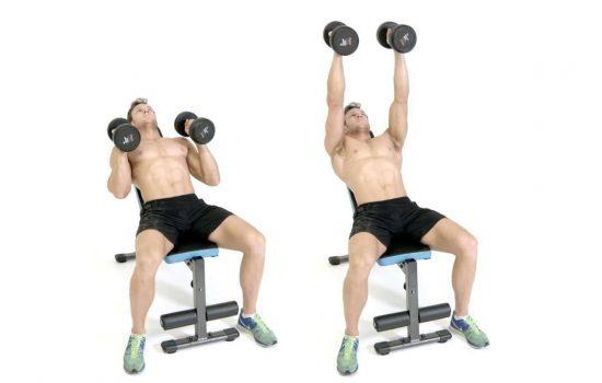 ضغط الدمبلز على البنش المائل مع موازاة الدمبلز للجسم (Incline Bench Press Neutral Grip)